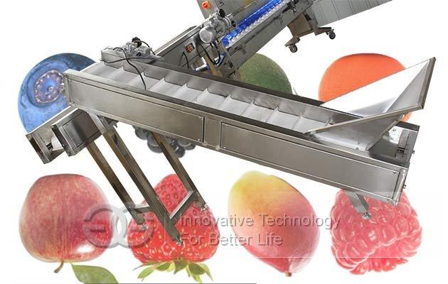 vegetable weight classifier