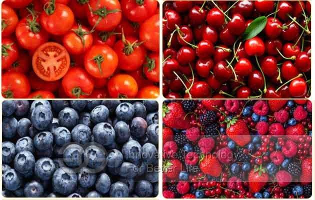 fruit grading machine price