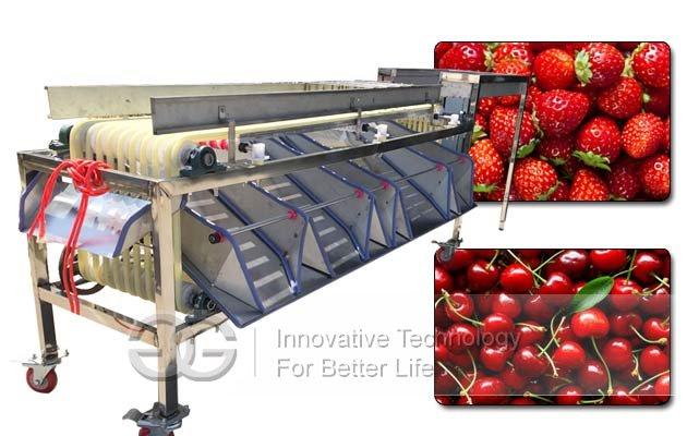 apple tomato fruit grading machine