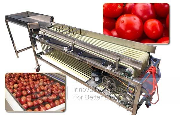 apple sorting machine price