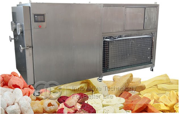 date freeze drying machine price