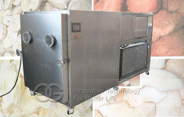 banana vacuum freeze dryer machine