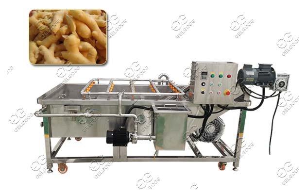 ginger washing peeling machine