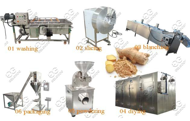 industrial ginger processing machine