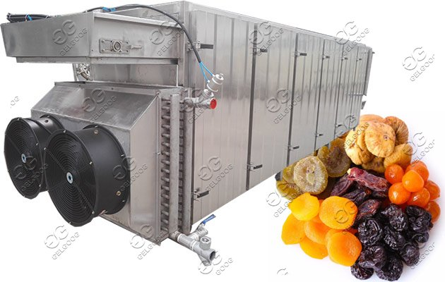 banana chips dryer machine