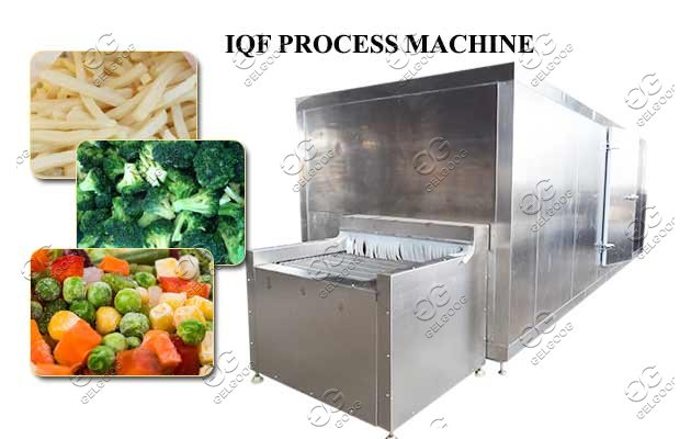 IQF processing line price