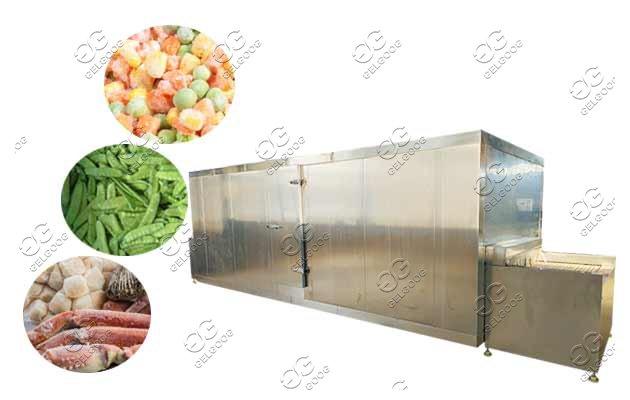 IQF freeze machine