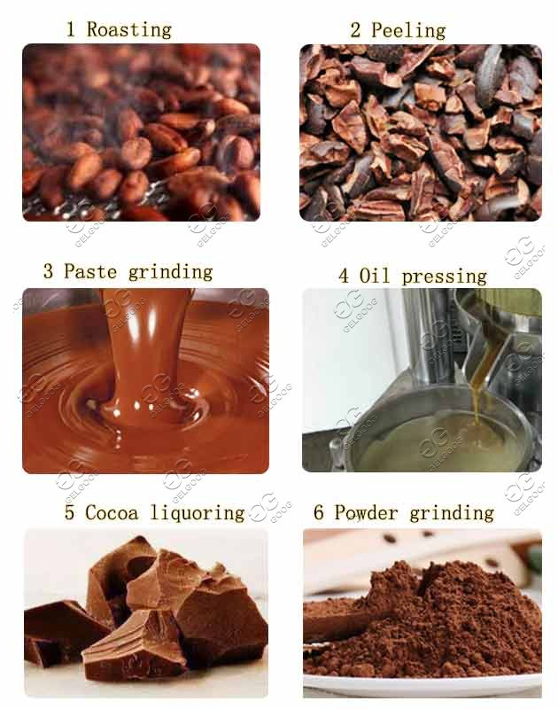 cocoa processing machine