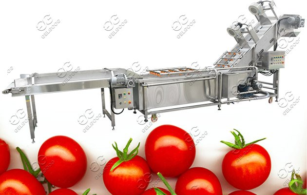 tomato ketchup industrial plant