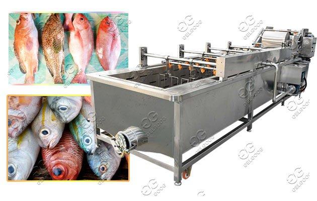 fish washing machine manufacturer