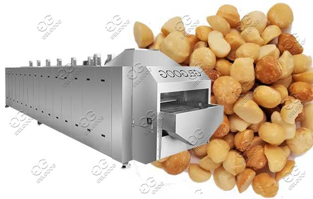 nut roaster machine line