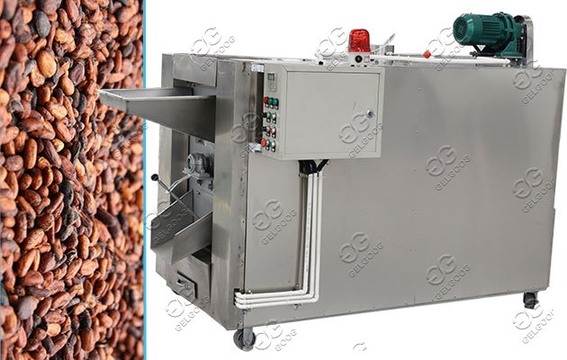 cacao roasting machine capacity