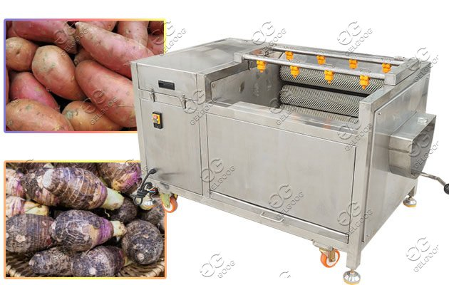 commercial brush type vegetable washing machine