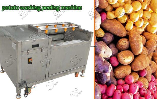 brush type washing peeling machine
