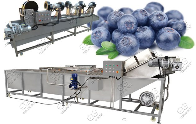 blueberry cleaning drying machine