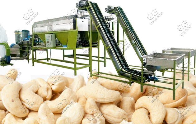 cashew shelling machine line