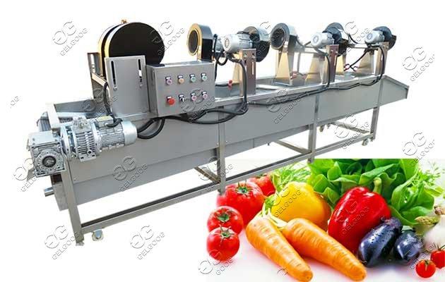 fruit vegetable drying machine