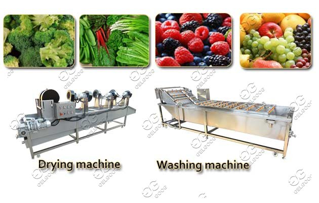 commercial fruit washer dryer
