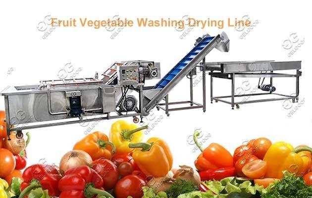 fruit washing machine supplier
