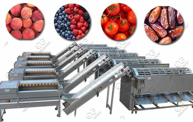 blueberry sorting machine for sale