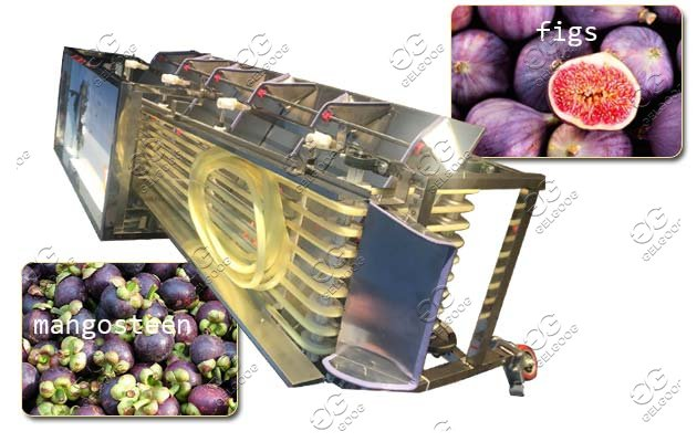 tomato cherry grading machine