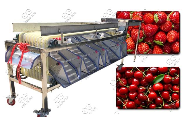 small size fruit sorting machine