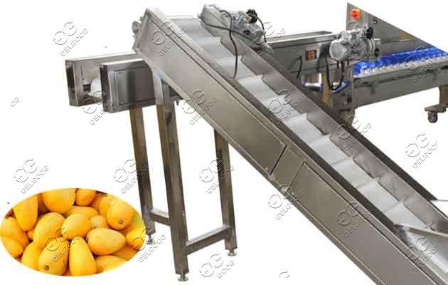 mango sorting line price