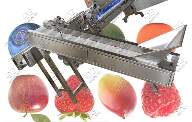 fruit grading machine for sale