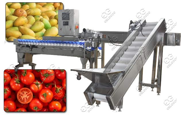 mango weighing sorting machine