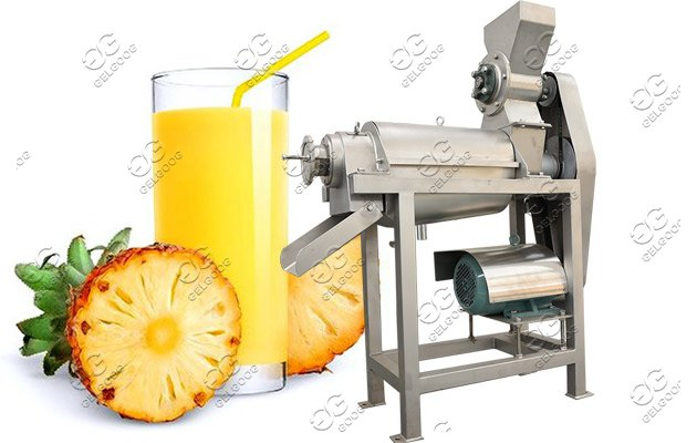 pineapple juice extractor machine