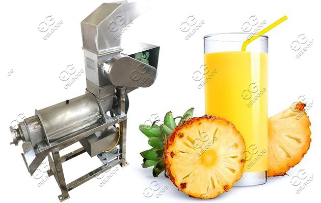 fruit crushing juicing machine