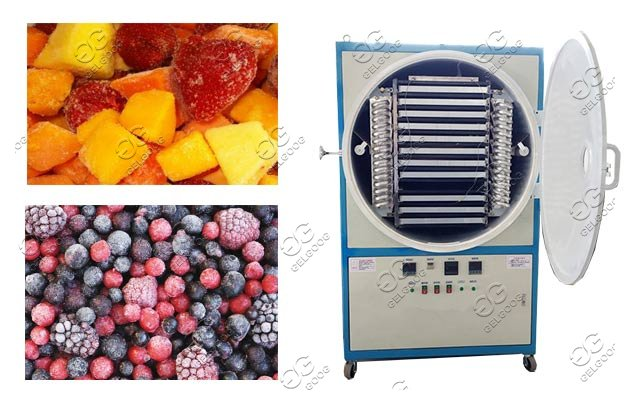 fruit freeze dryer machine on sale