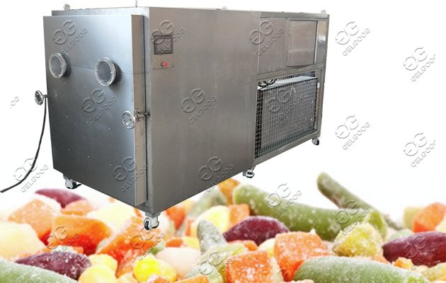 date freeze drying machine price