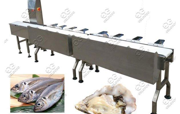 automatic fish sorting machine