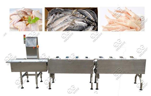 automatic seafood sorter grader machine