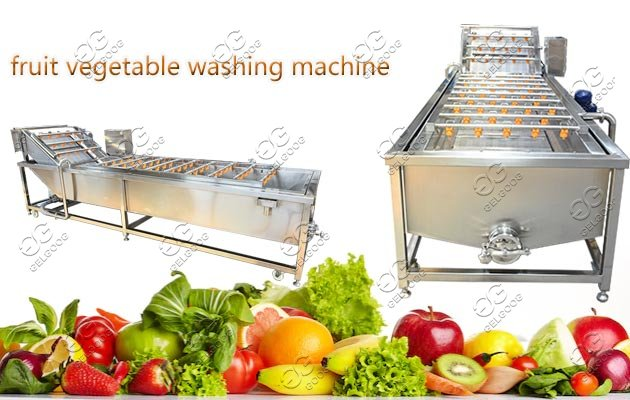 fruit vegetable cleaning machine