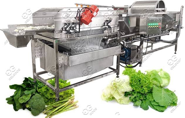 industrial vegetable washing machine