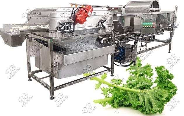 salad leaves washing machine price