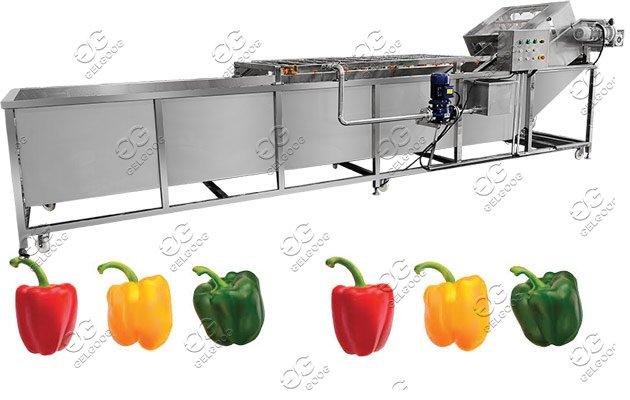 industrial green pepper washing machine