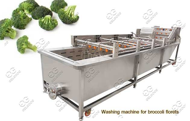 broccoli vegetable cleaning machine