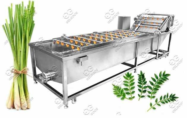 moringa leaves cleaniner machine