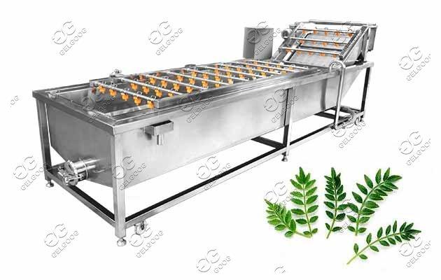 vegetable washing machine price