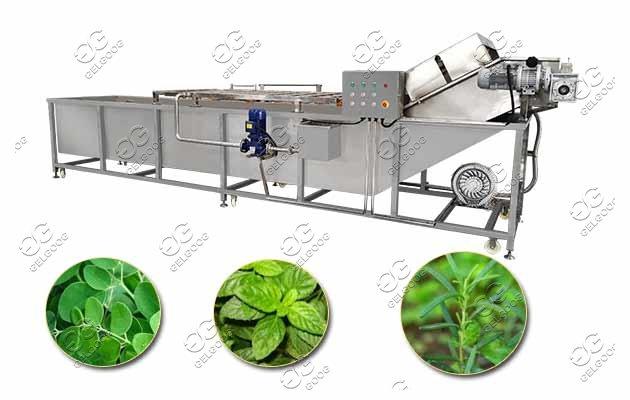 fruit vegetable washing machine