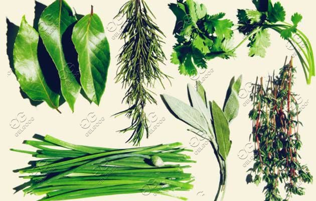 herbal leaves washing machine