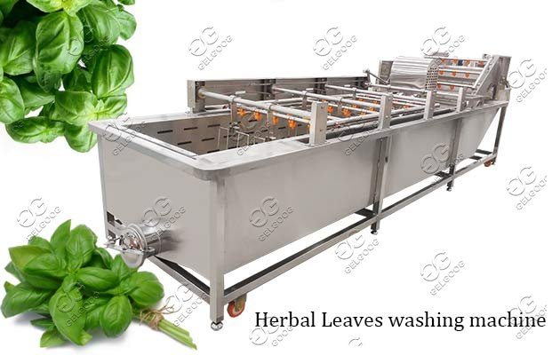 industrial fruit vegetable washing machine