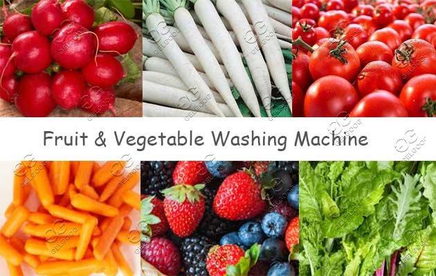 industrial raddish washer machine