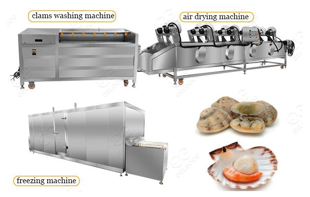 frozen clam processing plant