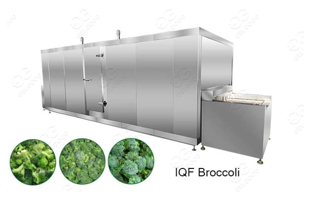 vegetable broccoli freezing machine