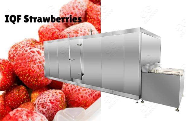 frozen strawberry making machine
