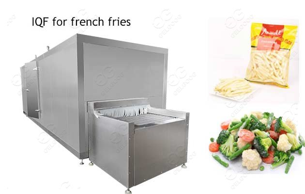french fries freezing plant